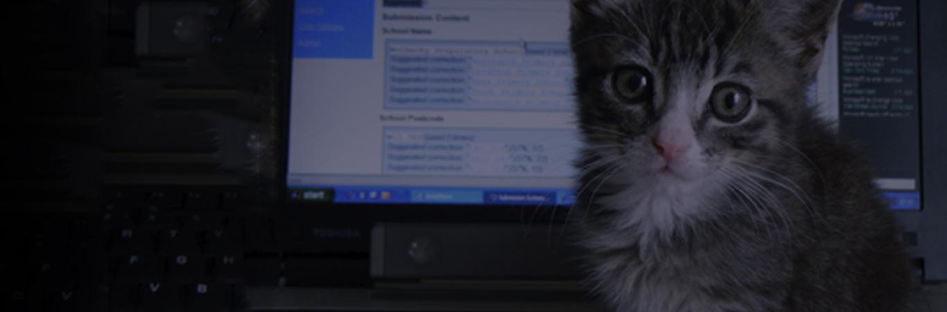 tienda-de-animales-online